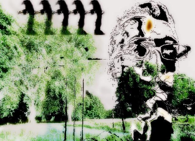 forest, portrait