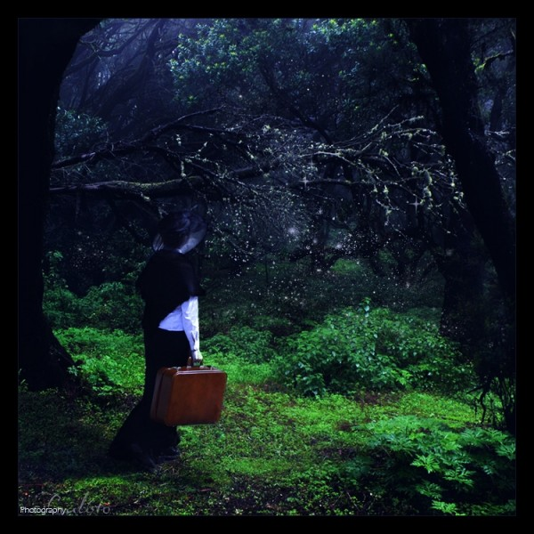 fairytale, place, secret, colors, fairy, gentle, d
