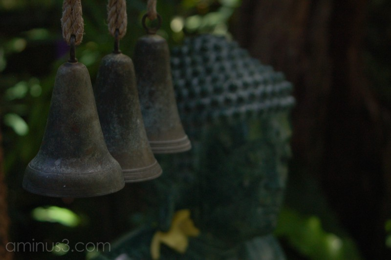 Bells and Buddha at Selby Gardens