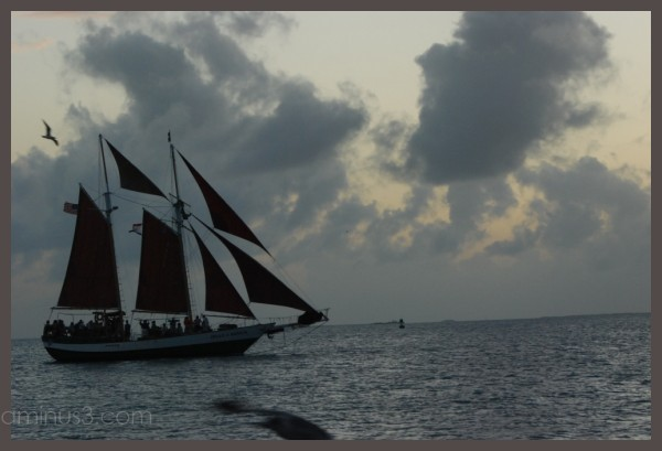 Key West Sailboat
