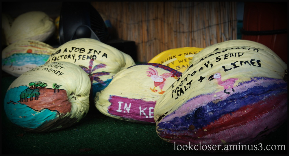 painted coconuts KeyWest vignette