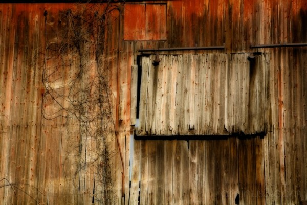 Beautifully Weathered