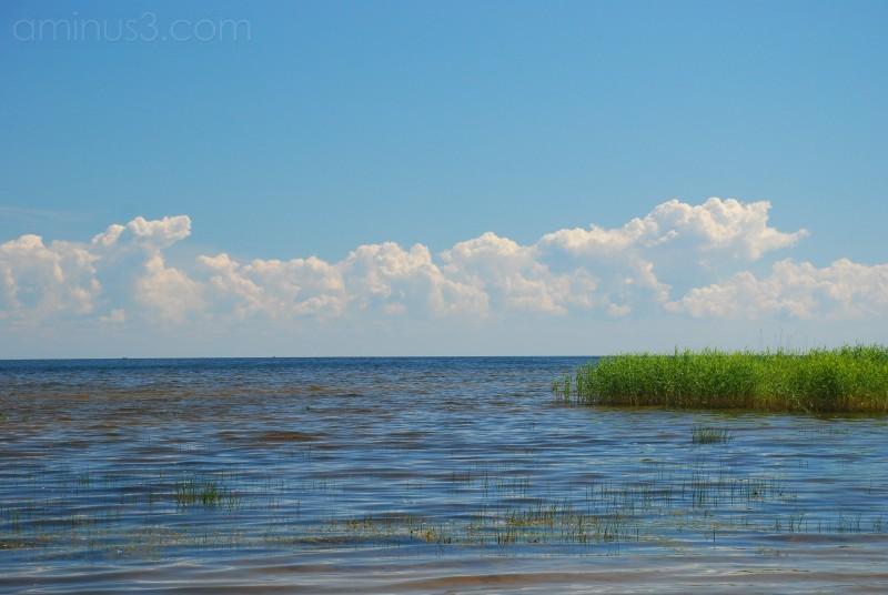 Lake Peipsi in estonia