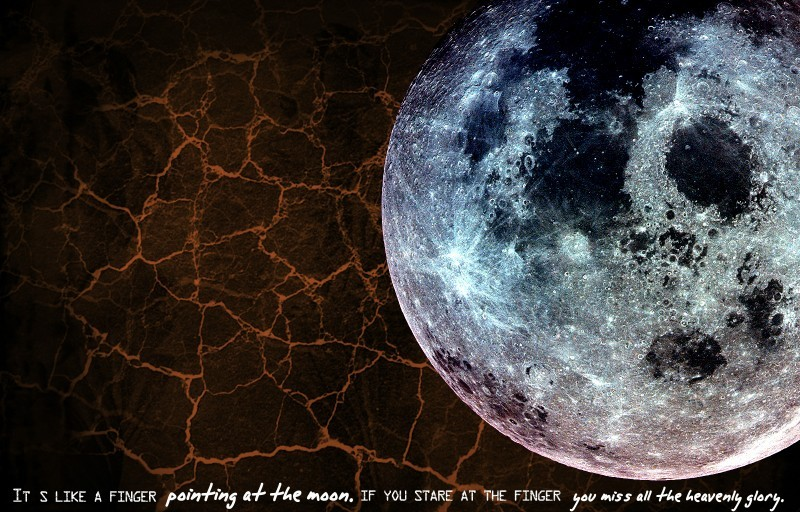 Watch only the moon