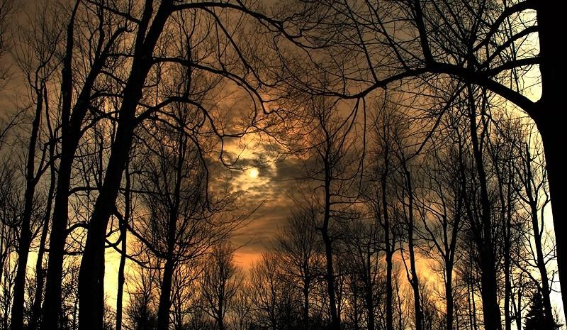 lumière incertaine - dubious light