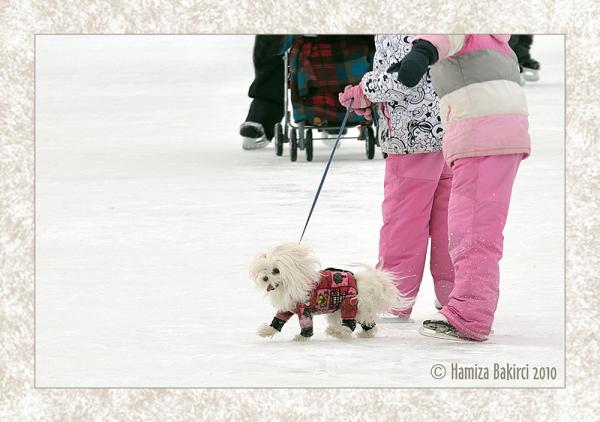 sortie en famille - family promenade