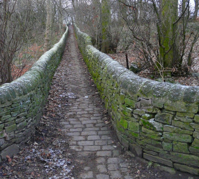Path from River Tame to Peak Forest Canal