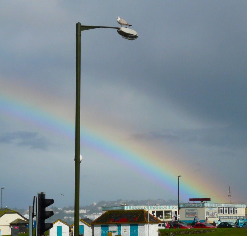 rainbow at paignton devon