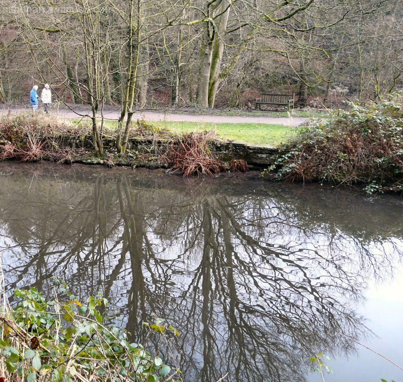 Reflections at Etherow Country Park