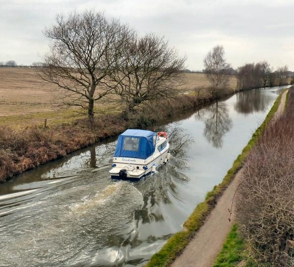 Carisbrooke on the Bridgewater Canal