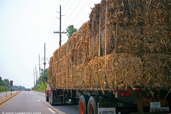 hay bales tractor trailer www.thebetsy.com