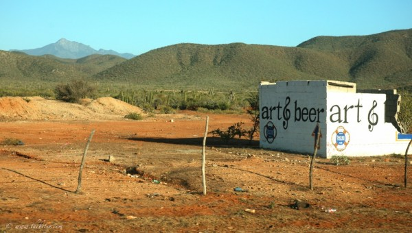 art and beer sign road todos santos windshield