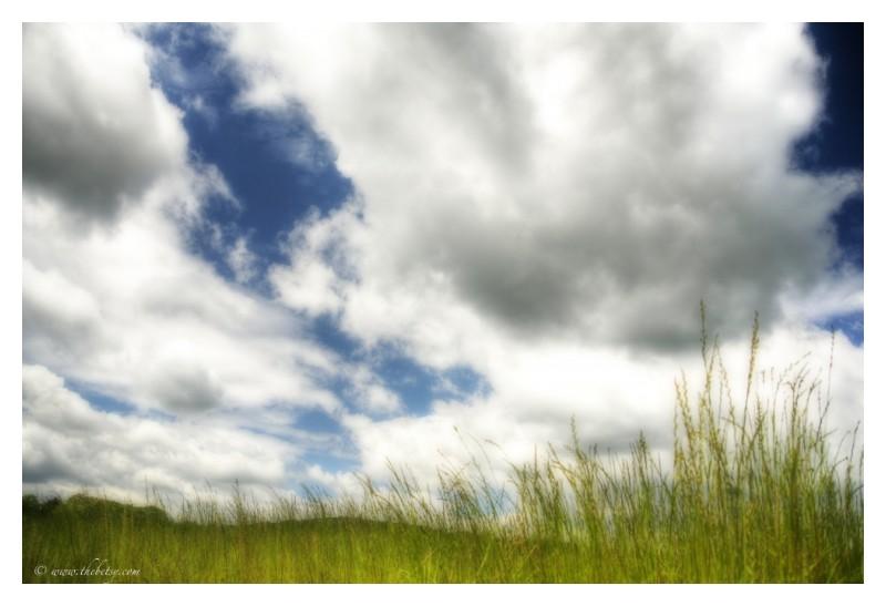 spring horizon orton effect clouds blue sky grasse