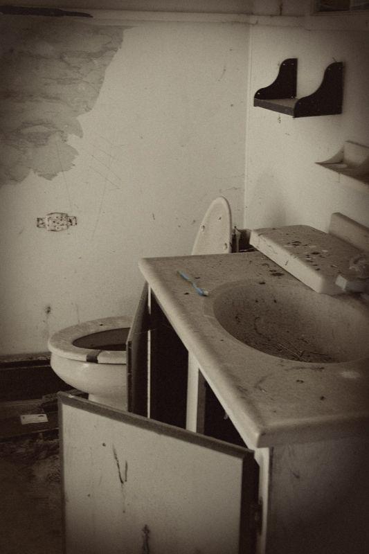 maryland house bathroom toothbrush dirty