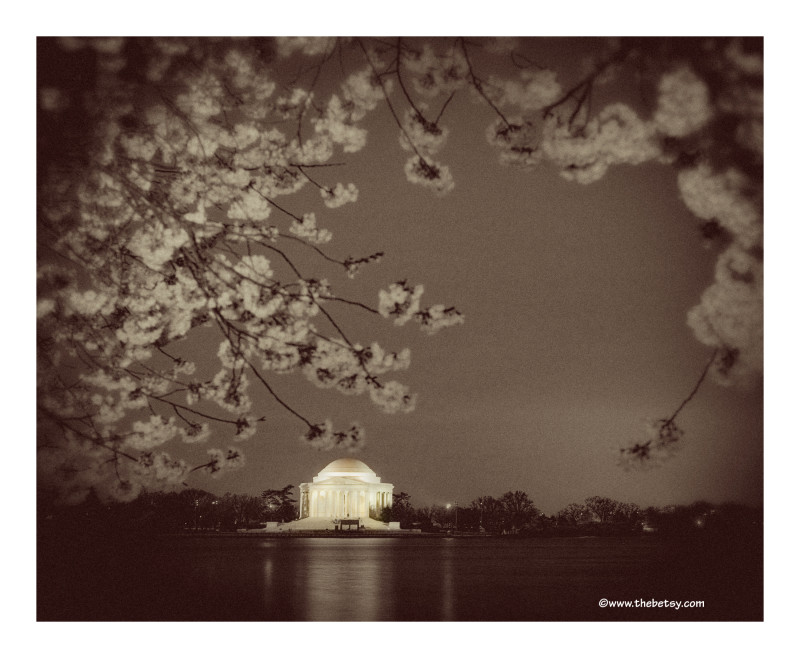 jefferson-memorial, night, dc, cherry-blossoms