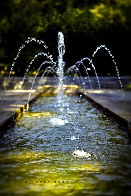 fountain, water, morris_arboretum