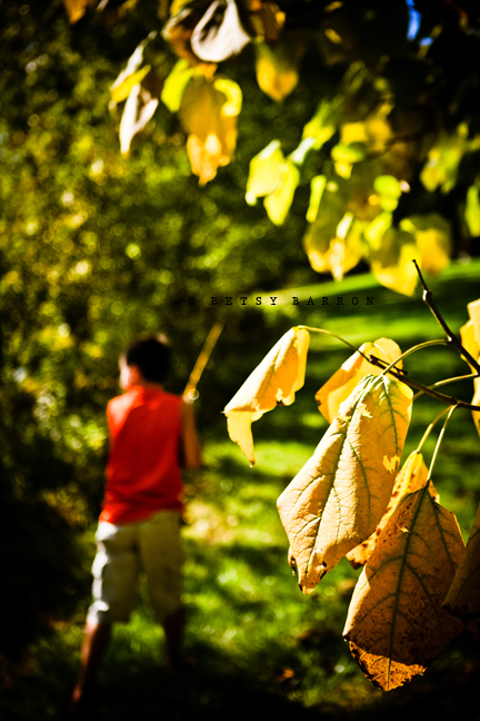 fall, portrait, jack, fishing, yellow, leaves