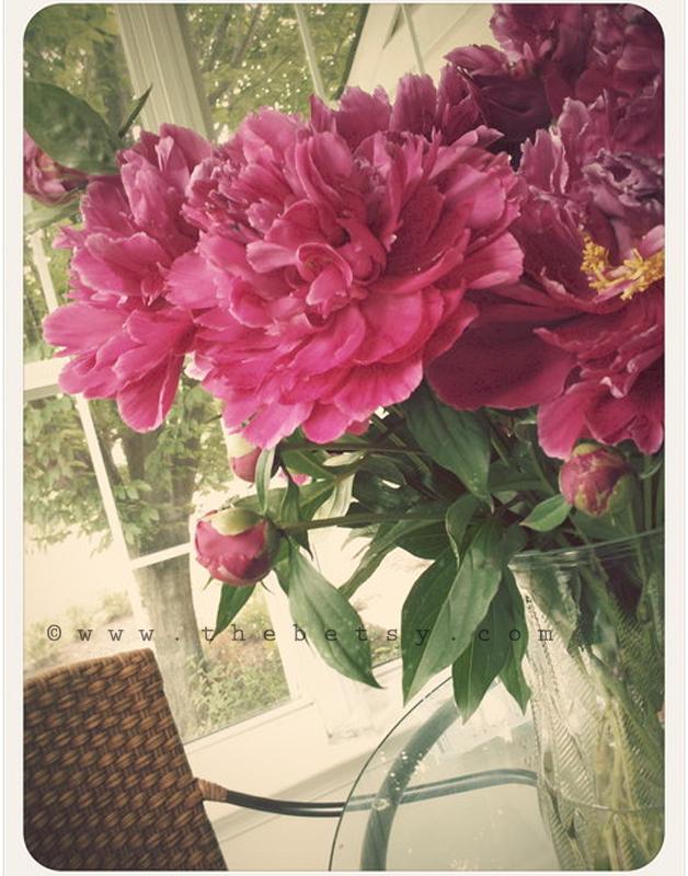 peonies, flower, vintage, vase