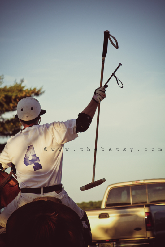 polo, brandywine, horse, player, sport, portrait
