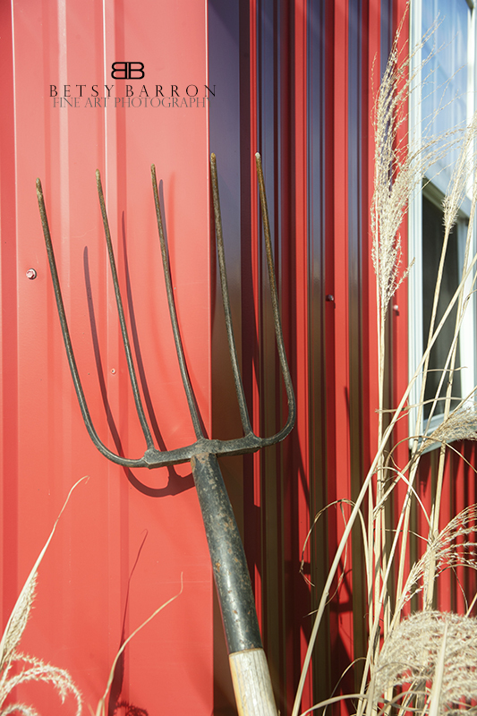 barn, red, pitchfork, wheat, farm, country, window