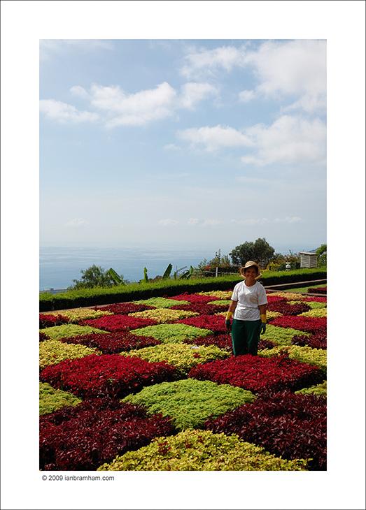 Botanic Gardens, Madeira