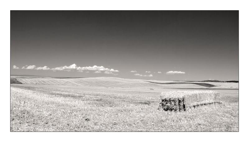 verano en la meseta