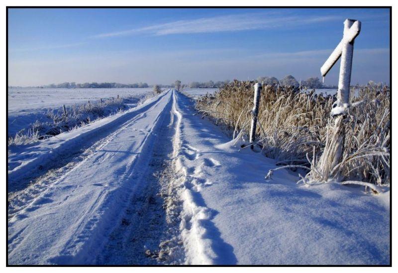* Wintermorning *