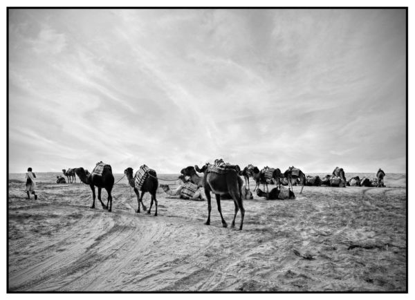 Sahara - Impression