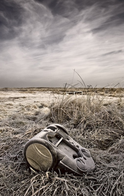 dyson vacuum frosty grass cold winter