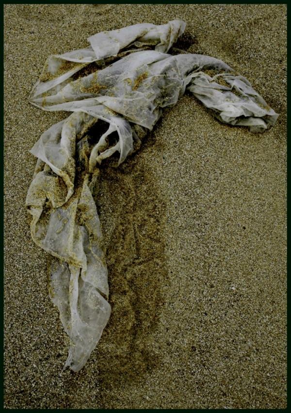 Trapo en la playa