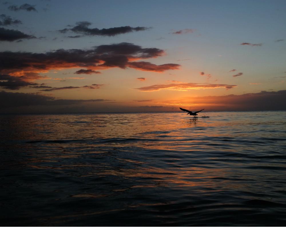 Sunset in Rincon, PR