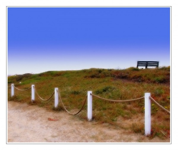Pigeon Point Bench