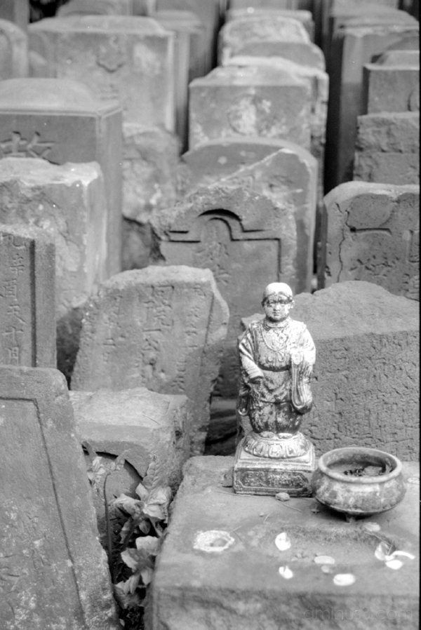temple grave buddha 寺 墓 仏 東京 根津 ねず tokyo