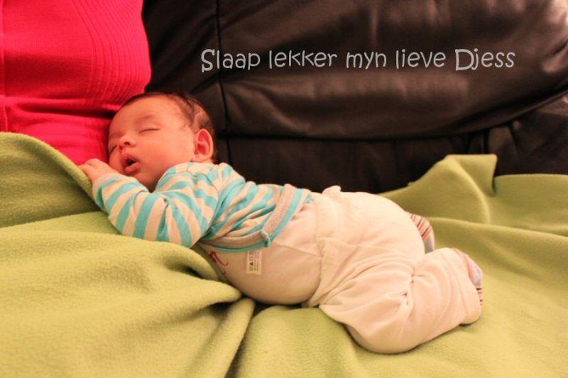 Djess sleep