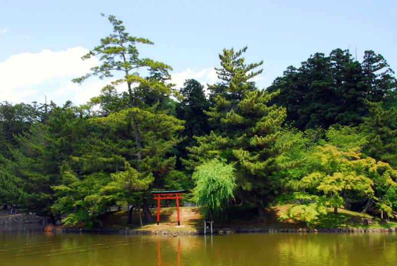 torii above the lake