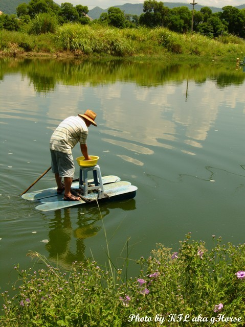 Fish Farmer
