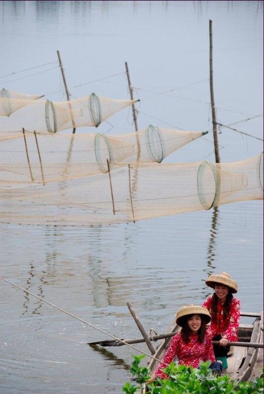 Sanmei Fishing Lady Net