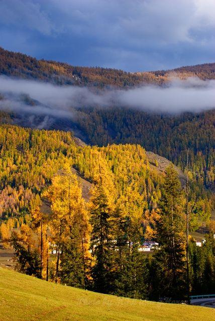 autum, cloud, Hanas, sky, tree, Xin Jiang, yellow