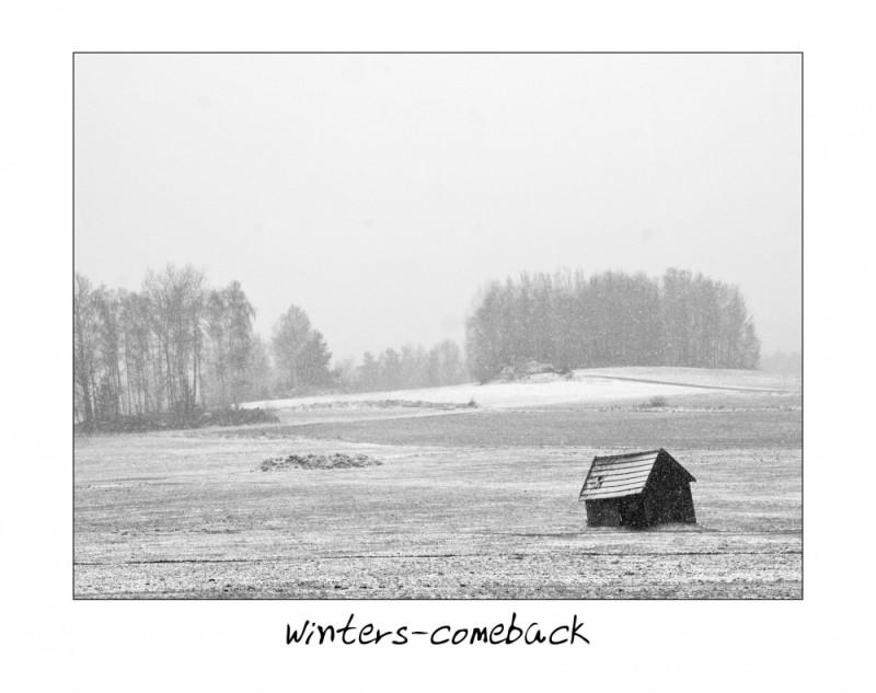 winters-comeback