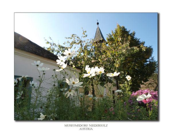 museum village old village niedersulz austria