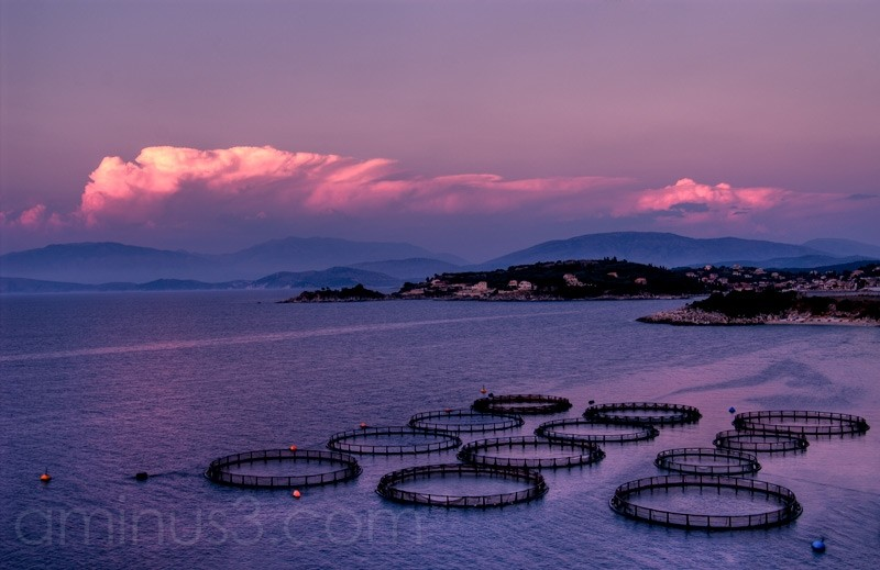 corfu ,Korfu, greece,fish farm