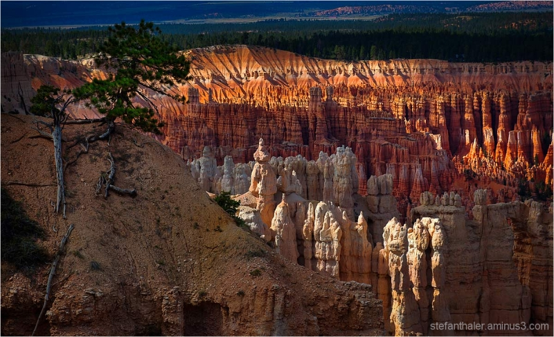 miracle of nature, bryce canyon