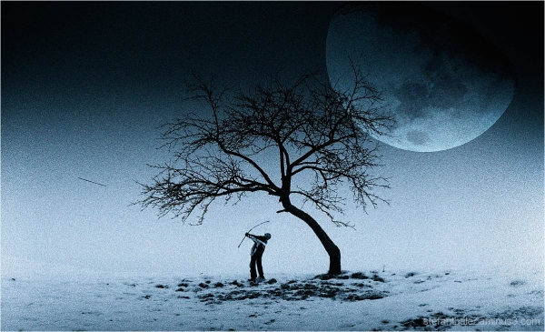 mond, children dream, winter, tree