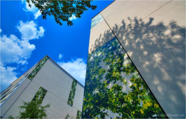 Reichenau, Innsbruck, Wohnhaus, green living