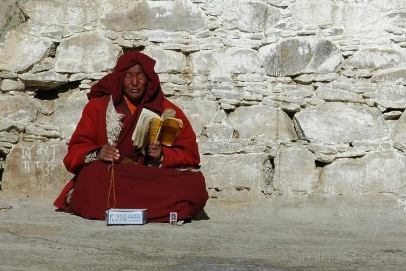 Buddhist Monk: Deprung Monastery, Tibet