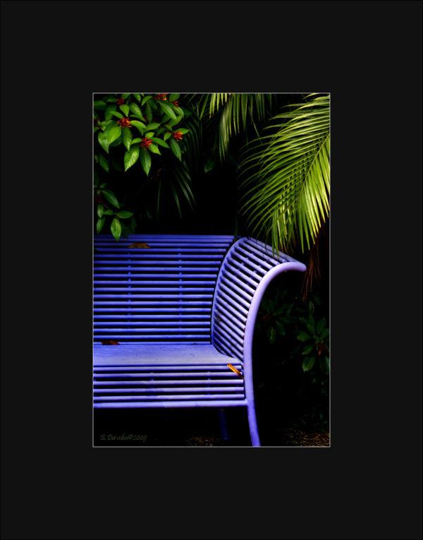 Purple Bench