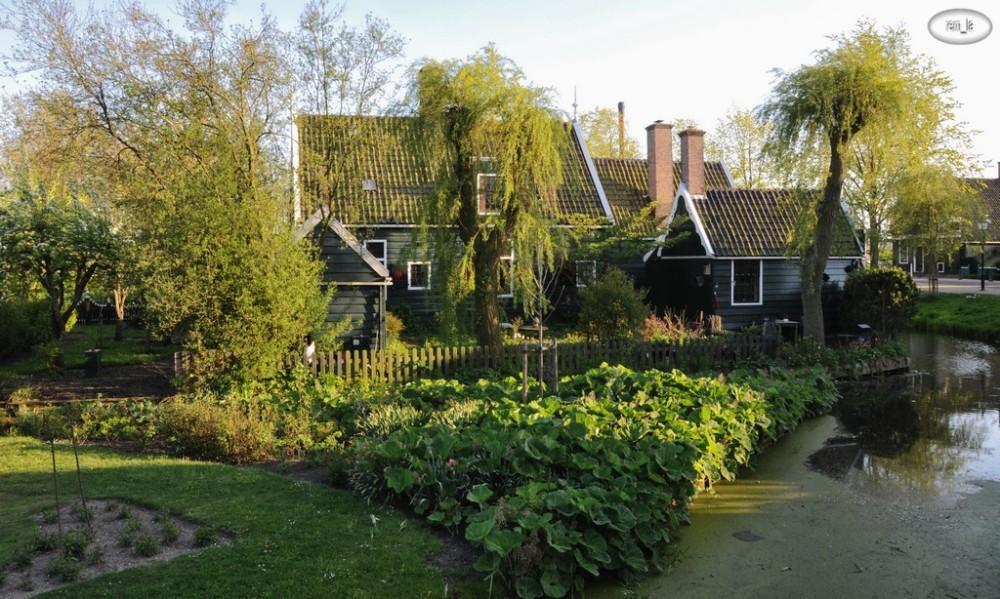 hollande,zaanse-shans,maison,paysage