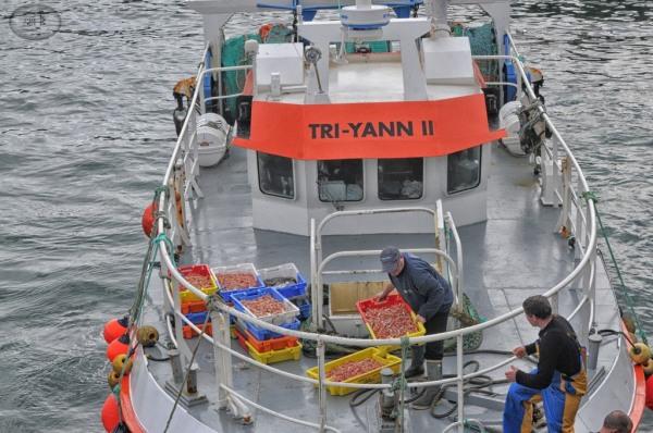 guilvinec,pêche,bateau,mer,finistere,bretagne