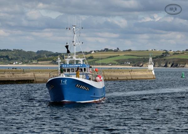 port,douarnenez,bateau,pêche,bretagne,finistere