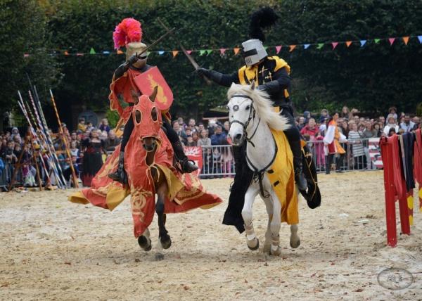fête,médiéval,brie comte robert,costume